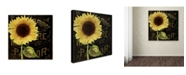 "Trademark Global Color Bakery 'Sunflower Salon I' Canvas Art - 14"" x 14"""