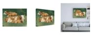 "Trademark Global Emma Scarvey Bucolic Sunday II Canvas Art - 19.5"" x 26"""