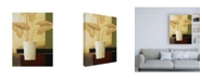 "Trademark Global Pablo Esteban White Vase with Large Leaves Canvas Art - 19.5"" x 26"""