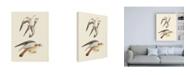"Trademark Global Wild Apple Portfolio Birds of Prey I Canvas Art - 27"" x 33.5"""