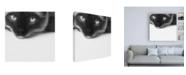 "Trademark Global Jon Bertell No Stress Siamese Canvas Art - 36.5"" x 48"""