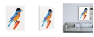 "Trademark Global Robert Farka Lord Bird Canvas Art - 15.5"" x 21"""