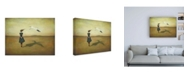 "Trademark Global Duy Huyn Eggscapism Canvas Art - 36.5"" x 48"""