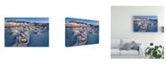 "Trademark Global John Fan Bisti Blue Canvas Art - 15"" x 20"""