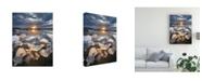 "Trademark Global Karsten Wrobel Transmission Snow Canvas Art - 37"" x 49"""
