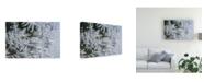"Trademark Global Kurt Shaffer Crystal Window 2 Canvas Art - 20"" x 25"""