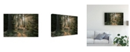 "Trademark Global Vincent Croce Rays Part 2 Canvas Art - 20"" x 25"""