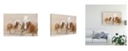 """Trademark Global Martine Benezech Direct Contact Canvas Art - 37"""" x 49"""""""