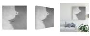 "Trademark Global Peter Svoboda Mqep Jinjang Canvas Art - 20"" x 25"""