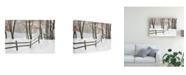 "Trademark Global Monte Nagler Winter Fence and Shadow Farmington Hills Michigan Canvas Art - 20"" x 25"""