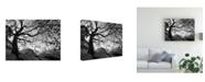 """Trademark Global Monte Nagler Central Park New York New York Canvas Art - 37"""" x 49"""""""