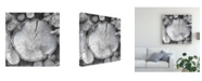 "Trademark Global John Butler Logging Light VI Canvas Art - 15"" x 20"""