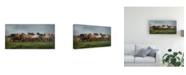 "Trademark Global PH Burchett Icelandic Horses XIII Canvas Art - 37"" x 49"""