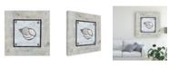 "Trademark Global Pablo Esteban Shell on Blue Gray 1 Canvas Art - 36.5"" x 48"""