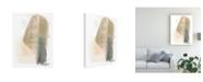 "Trademark Global June Erica Vess Blush Abstract III Canvas Art - 36.5"" x 48"""