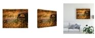 "Trademark Global PH Burchett Farm and Field V Canvas Art - 36.5"" x 48"""