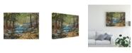 """Trademark Global Peter Snyder Glen Creek Waterfalls Canvas Art - 36.5"""" x 48"""""""