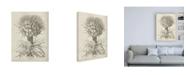 "Trademark Global Vision Studio Fresco Crown Imperial I Canvas Art - 36.5"" x 48"""