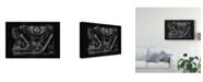 """Trademark Global Ethan Harper Polished Chrome II Canvas Art - 15"""" x 20"""""""