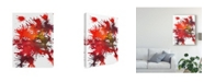"Trademark Global Jodi Fuchs Fireworks Display II Canvas Art - 15"" x 20"""
