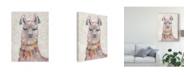 "Trademark Global Chariklia Zarris Festival Llama II Canvas Art - 15"" x 20"""