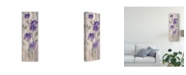 "Trademark Global Silvia Vassileva Spring Florals II Canvas Art - 20"" x 25"""