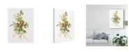 "Trademark Global Danhui Nai Floursack Holiday IX Canvas Art - 15"" x 20"""
