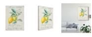 "Trademark Global Danhui Nai Floursack Lemon II Canvas Art - 15"" x 20"""