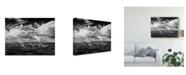 "Trademark Global David Drost Black and White Desert View IV Canvas Art - 15"" x 20"""