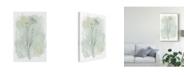 "Trademark Global June Erica Vess Stone Flower Study I Canvas Art - 37"" x 49"""