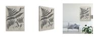 "Trademark Global Vision Studio Vintage Fern Study IV Canvas Art - 20"" x 25"""