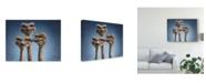 "Trademark Global Patrick Lamontagne Ostrich Trio Canvas Art - 37"" x 49"""