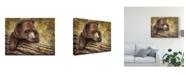 "Trademark Global Patrick Lamontagne Kodiak Cub Canvas Art - 20"" x 25"""