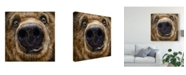 "Trademark Global Patrick Lamontagne Kodiak Closeup Canvas Art - 27"" x 33"""