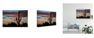 "Trademark Global Philippe Sainte-Laudy Hands Off Canvas Art - 20"" x 25"""
