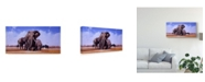 "Trademark Global Pip Mcgarry King of Marabou Pan Canvas Art - 20"" x 25"""