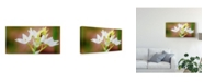 "Trademark Global Pixie Pics Bug on Flowers Canvas Art - 37"" x 49"""
