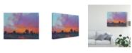 "Trademark Global Tim Otoole Fiery Sunset I Canvas Art - 20"" x 25"""