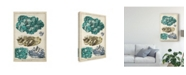 "Trademark Global Vision Studio Mineralogie I Canvas Art - 15"" x 20"""