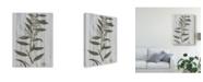 "Trademark Global Studio W Rustic Greenery III Canvas Art - 20"" x 25"""