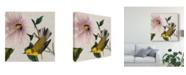 """Trademark Global John James Audubon Avian Crop V Canvas Art - 27"""" x 33"""""""