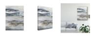 "Trademark Global Victoria Borges Neutral Salt Spray I Canvas Art - 37"" x 49"""