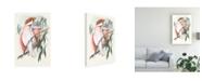 "Trademark Global John Gould Pastel Parrots I Canvas Art - 37"" x 49"""