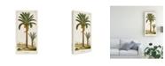 "Trademark Global Turpin Turpin Exotic Palms IV Canvas Art - 20"" x 25"""