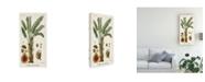 "Trademark Global Turpin Turpin Exotic Palms VI Canvas Art - 37"" x 49"""