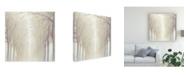 "Trademark Global Julia Purinton Misty Woods Canvas Art - 15"" x 20"""