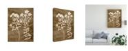 "Trademark Global Vision Studio Botanical in Taupe I Canvas Art - 37"" x 49"""