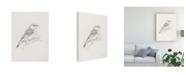 "Trademark Global Ethan Harper Avian Study II Canvas Art - 37"" x 49"""
