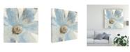 "Trademark Global Tim Otoole Spirit Flow II Canvas Art - 27"" x 33"""