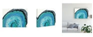 "Trademark Global Naomi Mccavitt Agate Studies II Canvas Art - 20"" x 25"""